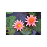 Water Lillies Gallery Wrapped Canvas