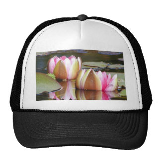 Water Lillies Hats