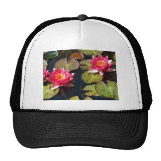 water lillies trucker hats