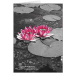 water lillies stationery note card