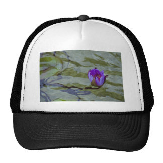 Water Lilly 2 Mesh Hats