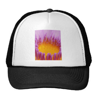 WATER LILLY MESH HATS