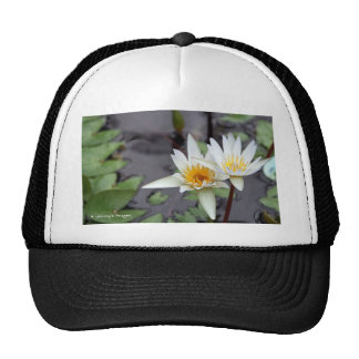 Water Lilly Hat
