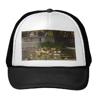 Water Lilly Lillies Flowers Mesh Hats