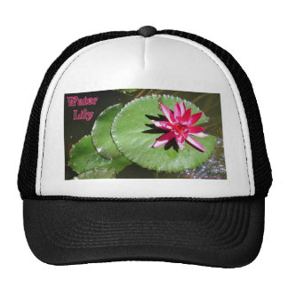 WATER LILY 1 MESH HAT