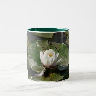 water lily 1 Two-Tone coffee mug