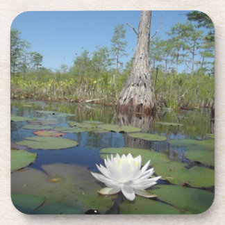 Water Lily 2 Beverage Coaster