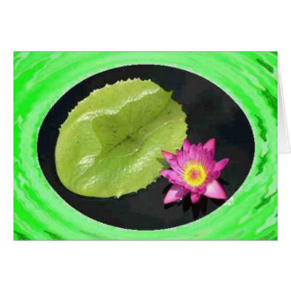 Water Lily 2 Card
