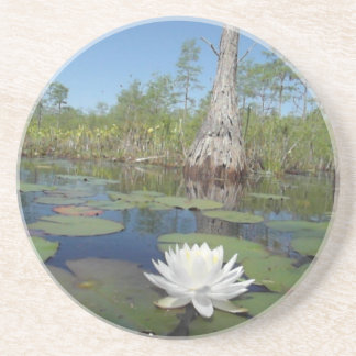 Water Lily 2 Coasters