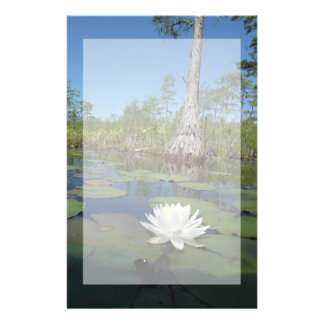 Water Lily 2 Custom Stationery