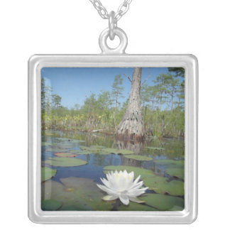 Water Lily 2 Jewelry