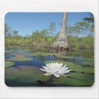 Water Lily 2 Mousepads