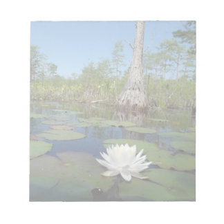 Water Lily 2 Note Pad