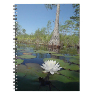 Water Lily 2 Notebooks