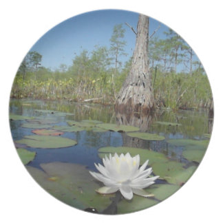 Water Lily 2 Party Plates