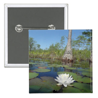 Water Lily 2 Pins