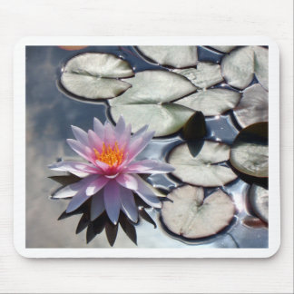 water-lily-322 mouse pad