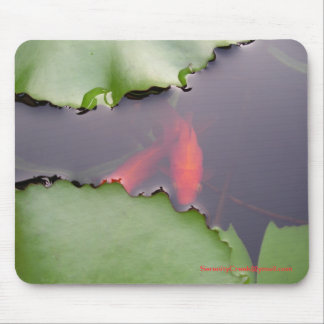 Water lily and gold fish mouse pad