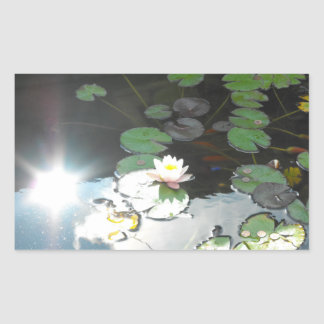 Water Lily and Sun Rectangular Sticker