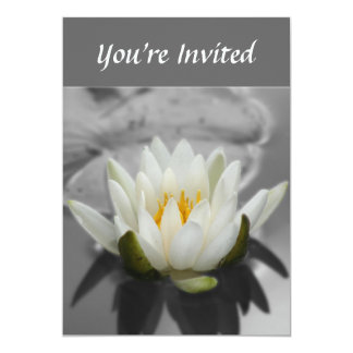 Water Lily Black And White Floral Invitation