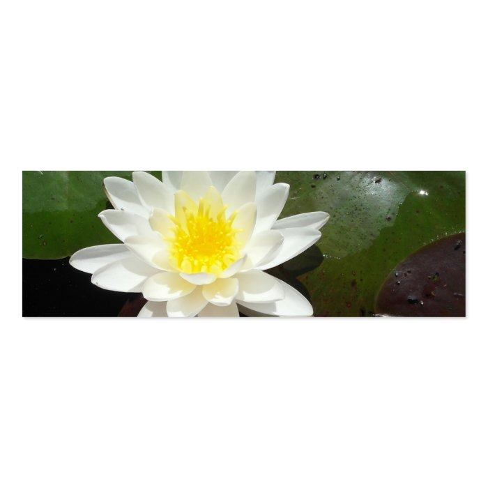 Water Lily Bookmark Mini Business Card