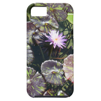 Water Lily iPhone 5/5S Cover