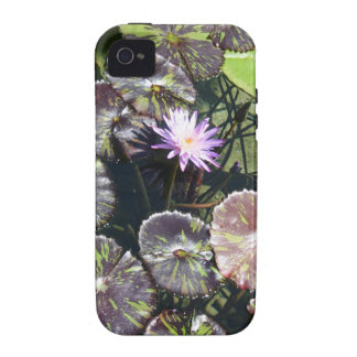 Water Lily Vibe iPhone 4 Cover