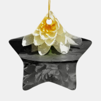 Water Lily Ceramic Ornament