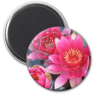 Water Lily Circular Magnet