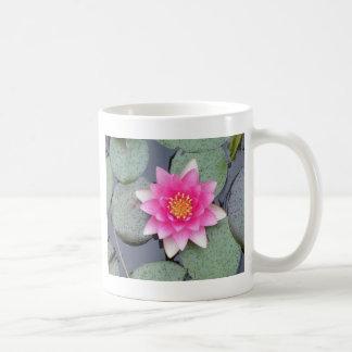 Water Lily Classic White Coffee Mug