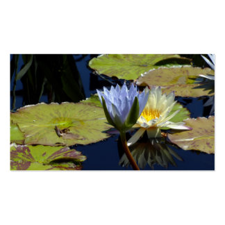 Water Lily Dance Business Card Templates
