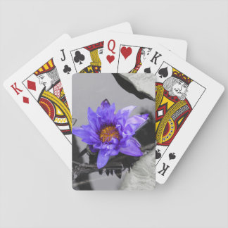 Water Lily Deck Of Cards