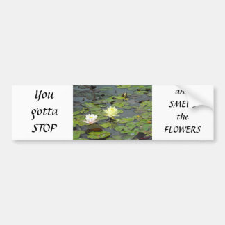 Water Lily Duo Car Bumper Sticker