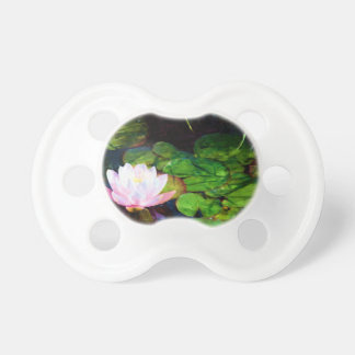 Water lily floating in a pond pacifier