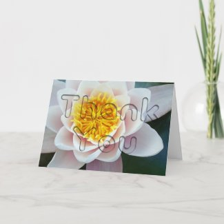 Water Lily Floral Thank You card