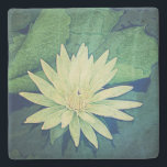 """Water Lily Flower Green Stone Coaster<br><div class=""""desc"""">Beautiful water lily photography image. Image copyright Melissa Reese Peterson,  all rights reserved. Thank you,  enjoy!</div>"""