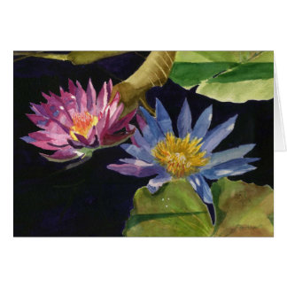 Water Lily Greeting Cards