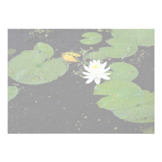 Water lily Ile du Marais Ste-Catherine-de-Hatley Custom Invitation