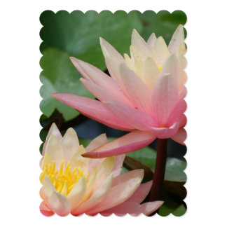 Water Lily 5x7 Paper Invitation Card