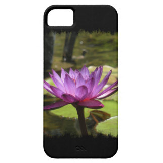 Water Lily iPhone 5 Casemate Case