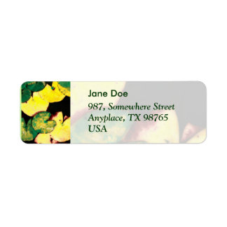 Water lily leaves return address label