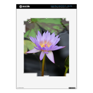 Water Lily Lotus Skin For iPad 3