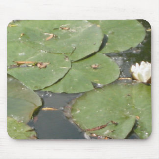 Water Lily love Part 2 Mouse Pad