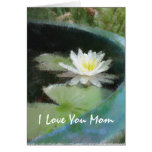 Water Lily Mother's Day Card