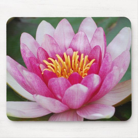 Water Lily Mousepad