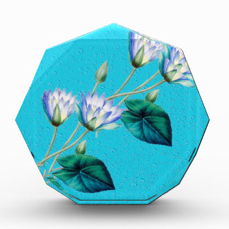 Water Lily On Blue Award
