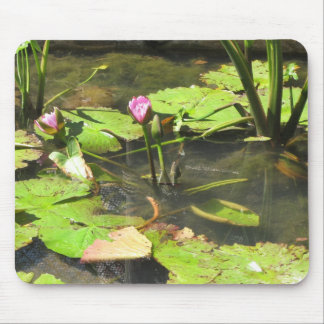 Water LIly Pad Pond Mouse Pad