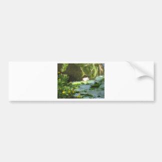 Water Lily Pond Bumper Sticker