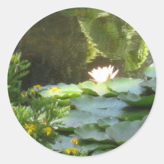 Water Lily Pond Classic Round Sticker