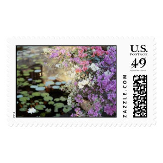 Water Lily Pond Stamps
